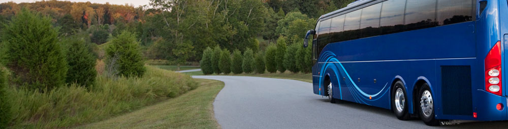 Travel by bus with us!